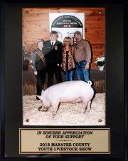 2018 Manatee County Youth Livestock Show
